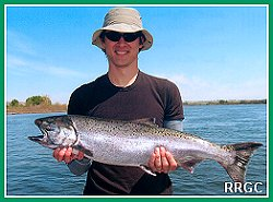 Columbia Salmon